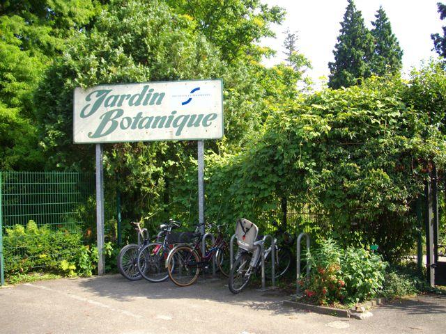Stra burgs botanischer garten ein kleines paradies le jardin botanique de strasbourg un - Jardin botanique de strasbourg ...